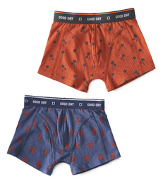 boxers palm orange & lobster Little Label
