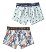 boxers palm leaves green & palm azur Little Label